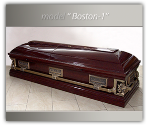 fereastra_model_boston