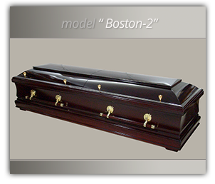 fereastra_model_boston_2